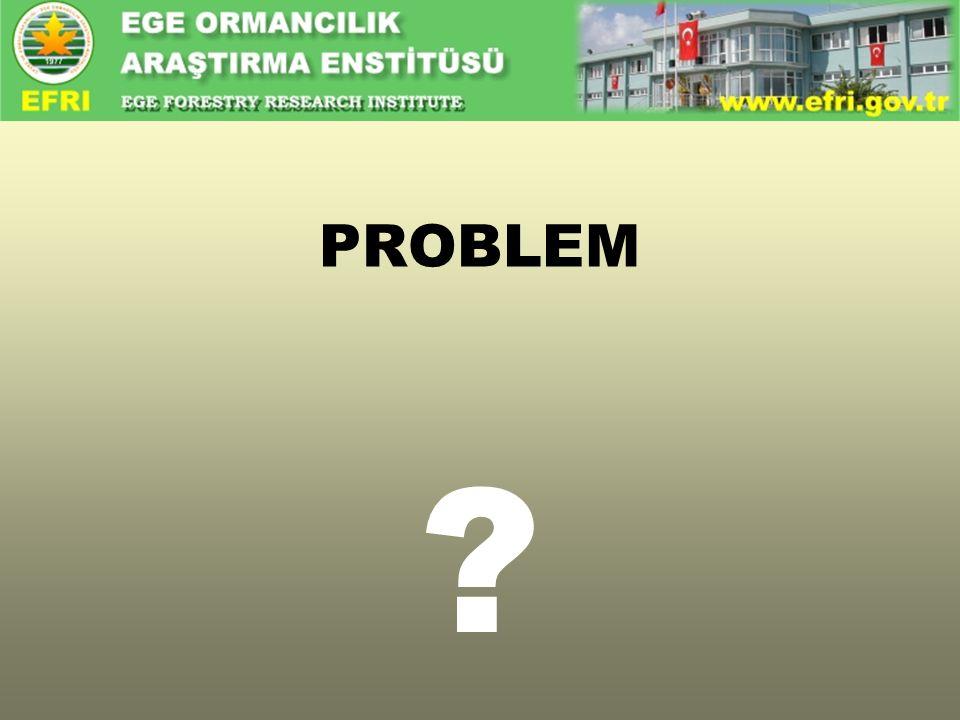 ? PROBLEM