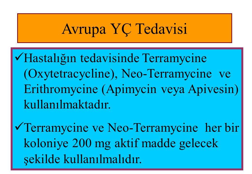 Avrupa YÇ Tedavisi  Hastalığın tedavisinde Terramycine (Oxytetracycline), Neo-Terramycine ve Erithromycine (Apimycin veya Apivesin) kullanılmaktadır.