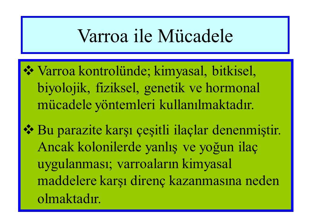 Varroa ile Mücadele  Varroa kontrolünde; kimyasal, bitkisel, biyolojik, fiziksel, genetik ve hormonal mücadele yöntemleri kullanılmaktadır.  Bu para