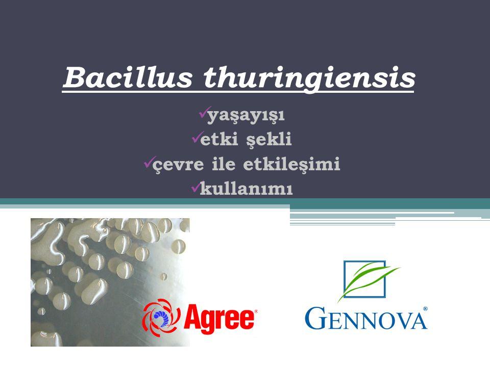 Bacillus thuringiensis  yaşayışı  etki şekli  çevre ile etkileşimi  kullanımı