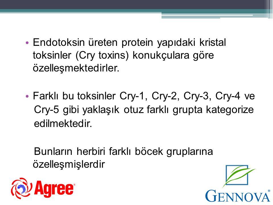• Endotoksin üreten protein yapıdaki kristal toksinler (Cry toxins) konukçulara göre özelleşmektedirler. • Farklı bu toksinler Cry-1, Cry-2, Cry-3, Cr