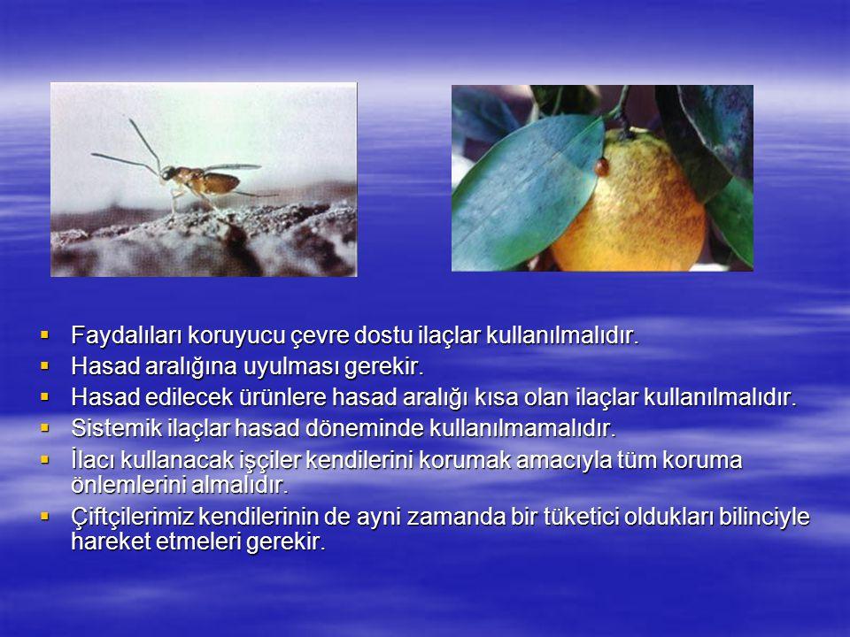  Faydalıları koruyucu çevre dostu ilaçlar kullanılmalıdır.  Hasad aralığına uyulması gerekir.  Hasad edilecek ürünlere hasad aralığı kısa olan ilaç