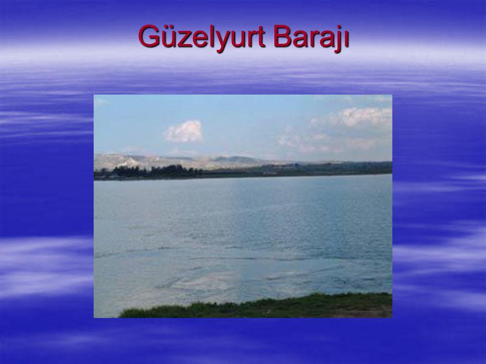 Güzelyurt Barajı