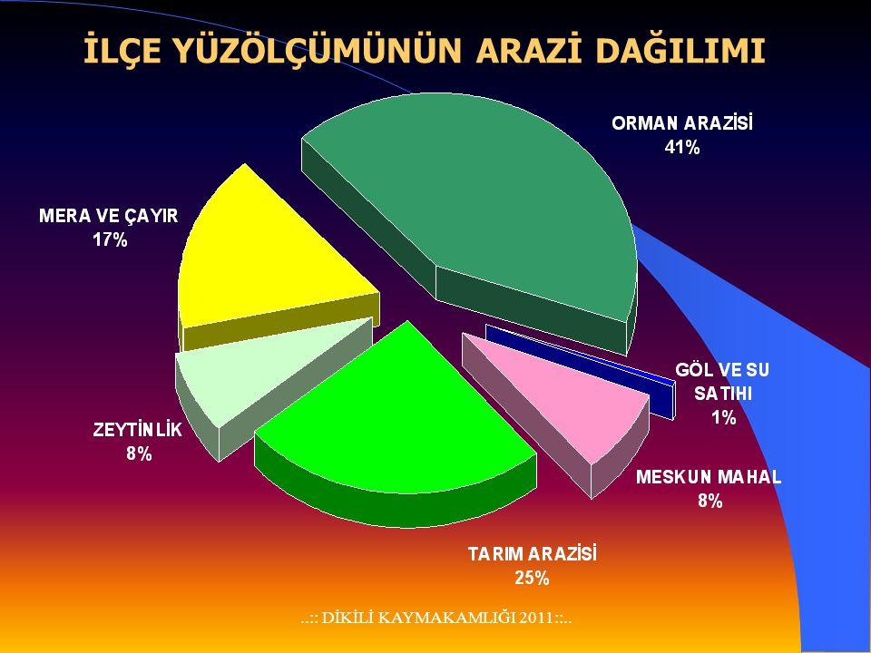 ..:: DİKİLİ KAYMAKAMLIĞI 2011::..