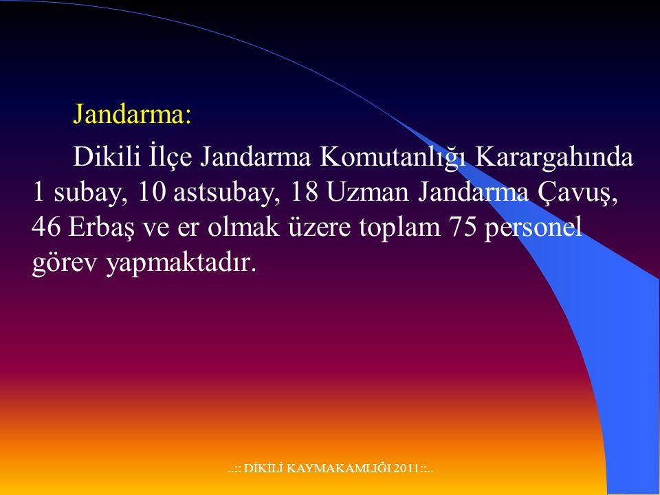 ..:: DİKİLİ KAYMAKAMLIĞI 2011::.. F-ASAYİŞ VE GÜVENLİK GENEL İlçemizde özellikle yaz aylarında nüfus yoğunluğu nedeniyle kapkaç ve hırsızlık olayların