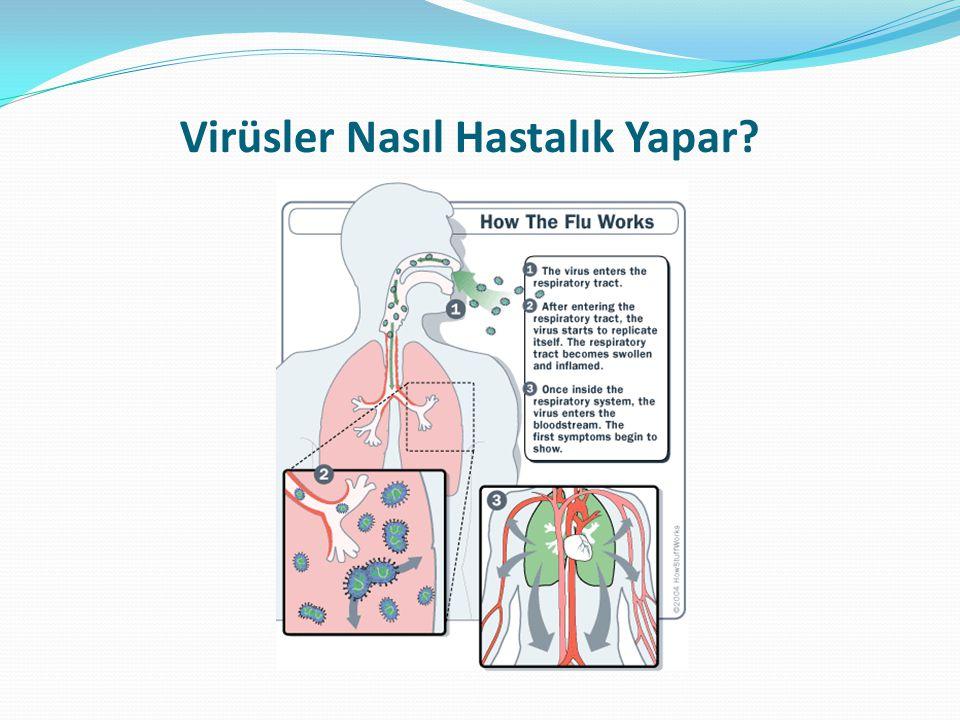 Soğuk algınlığı veya grip olup olmadığını nasıl anlayabilirim.
