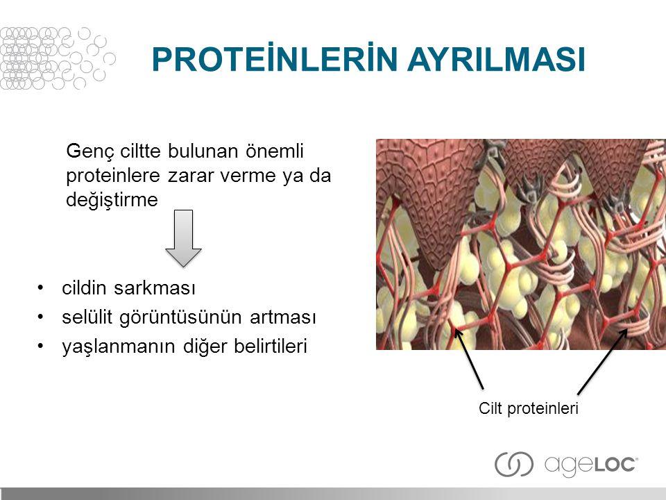 Genç ciltte bulunan önemli proteinlere zarar verme ya da değiştirme •cildin sarkması •selülit görüntüsünün artması •yaşlanmanın diğer belirtileri Cilt