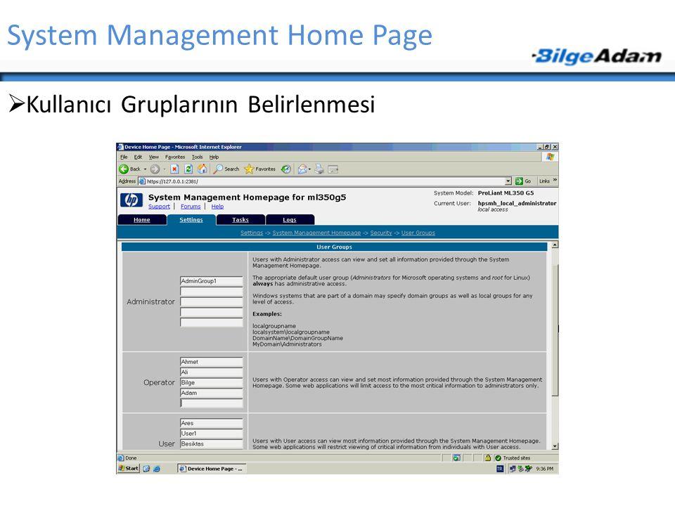 System Management Home Page  Kullanıcı Gruplarının Belirlenmesi