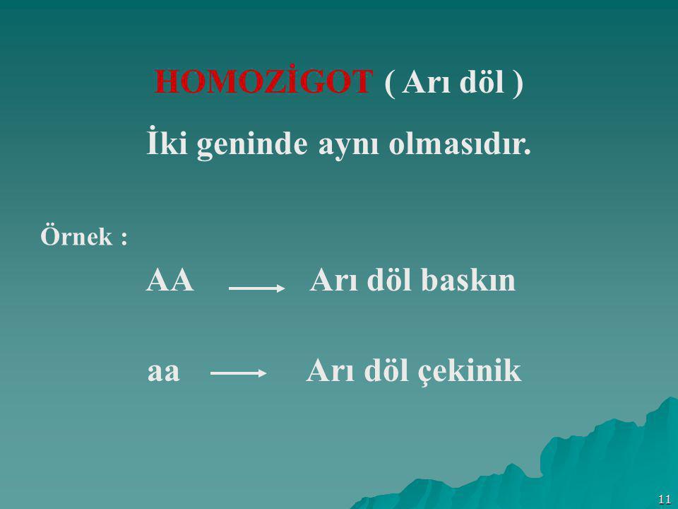 11 HOMOZİGOT ( Arı döl ) İki geninde aynı olmasıdır. Örnek : AA Arı döl baskın aa Arı döl çekinik