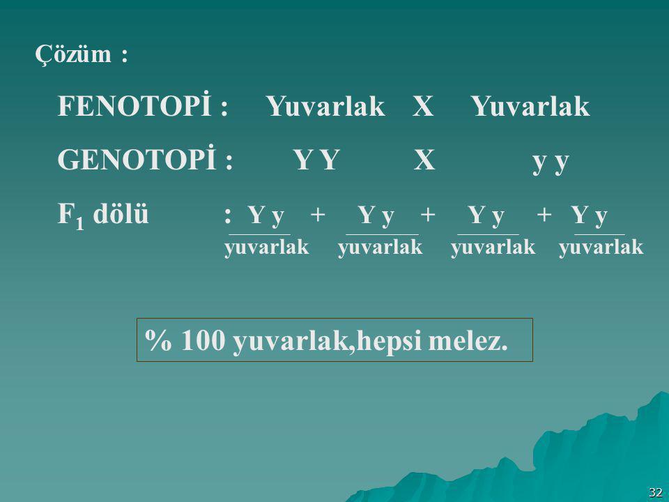32 Çözüm : FENOTOPİ : Yuvarlak X Yuvarlak GENOTOPİ : Y Y X y y F 1 dölü : Y y + Y y + Y y + Y y % 100 yuvarlak,hepsi melez. yuvarlak yuvarlak