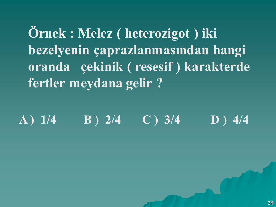 34 Örnek : Melez ( heterozigot ) iki bezelyenin çaprazlanmasından hangi oranda çekinik ( resesif ) karakterde fertler meydana gelir ? A ) 1/4 B ) 2/4