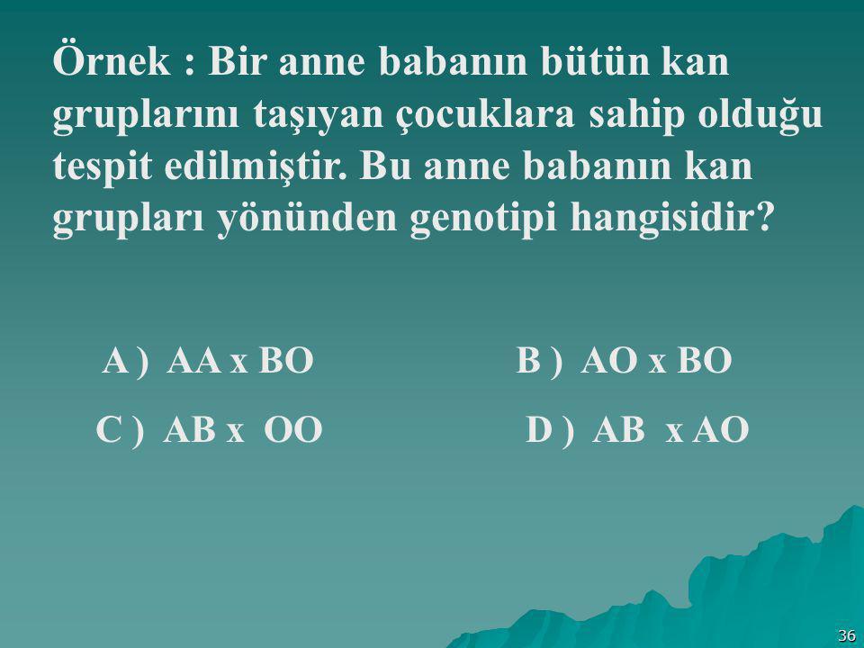 36 Örnek : Bir anne babanın bütün kan gruplarını taşıyan çocuklara sahip olduğu tespit edilmiştir. Bu anne babanın kan grupları yönünden genotipi hang