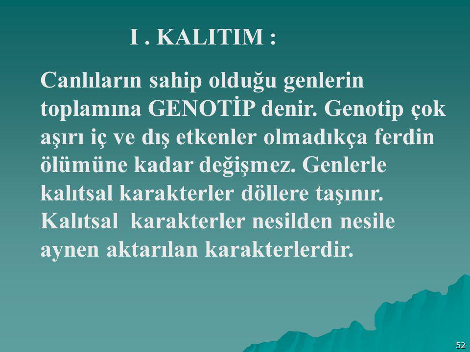 52 Canlıların sahip olduğu genlerin toplamına GENOTİP denir. Genotip çok aşırı iç ve dış etkenler olmadıkça ferdin ölümüne kadar değişmez. Genlerle ka