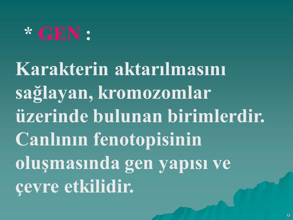 9 * GEN : Karakterin aktarılmasını sağlayan, kromozomlar üzerinde bulunan birimlerdir. Canlının fenotopisinin oluşmasında gen yapısı ve çevre etkilidi
