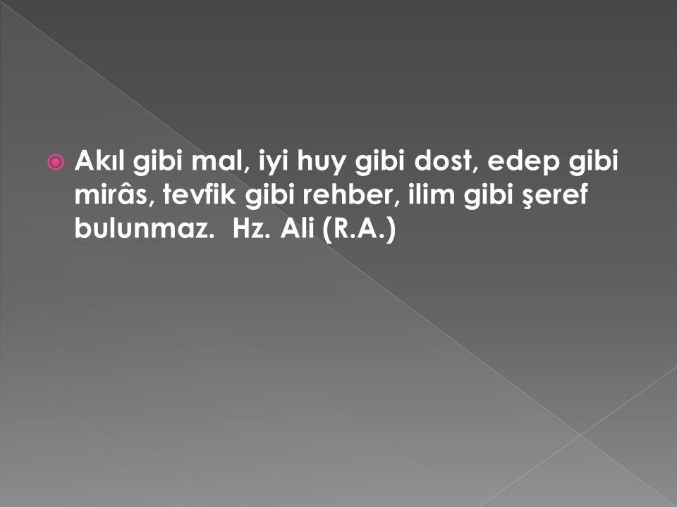 Akıl gibi mal, iyi huy gibi dost, edep gibi mirâs, tevfik gibi rehber, ilim gibi şeref bulunmaz. Hz. Ali (R.A.)