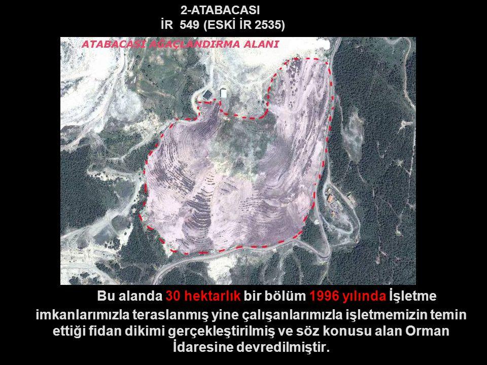 2-ATABACASI İR 549 (ESKİ İR 2535) Bu alanda 30 hektarlık bir bölüm 1996 yılında İşletme imkanlarımızla teraslanmış yine çalışanlarımızla işletmemizin