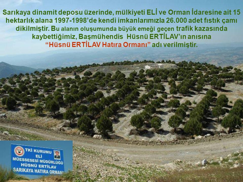Sarıkaya dinamit deposu üzerinde, mülkiyeti ELİ ve Orman İdaresine ait 15 hektarlık alana 1997-1998'de kendi imkanlarımızla 26.000 adet fıstık çamı di