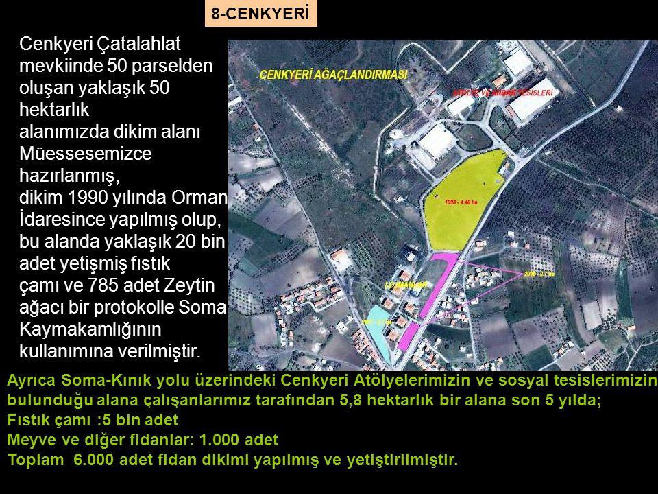 Ayrıca Soma-Kınık yolu üzerindeki Cenkyeri Atölyelerimizin ve sosyal tesislerimizin bulunduğu alana çalışanlarımız tarafından 5,8 hektarlık bir alana