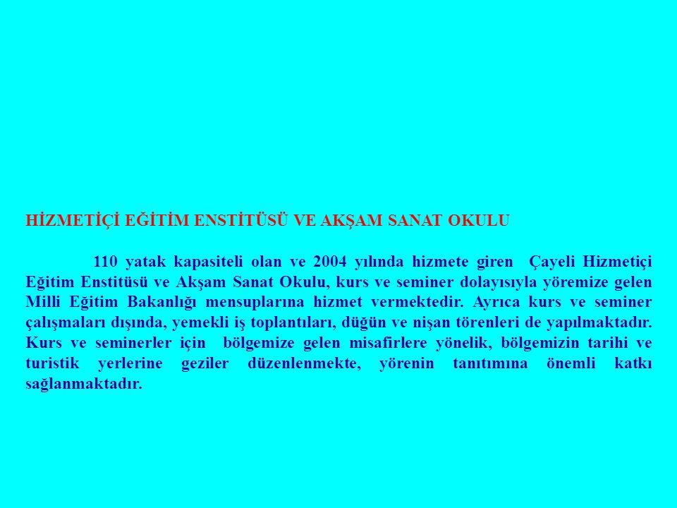 HİZMETİÇİ EĞİTİM ENSTİTÜSÜ VE AKŞAM SANAT OKULU 110 yatak kapasiteli olan ve 2004 yılında hizmete giren Çayeli Hizmetiçi Eğitim Enstitüsü ve Akşam San