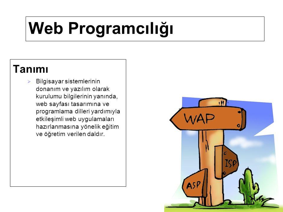 Web Programcılığı Görevleri  İş organizasyonu yapmak.