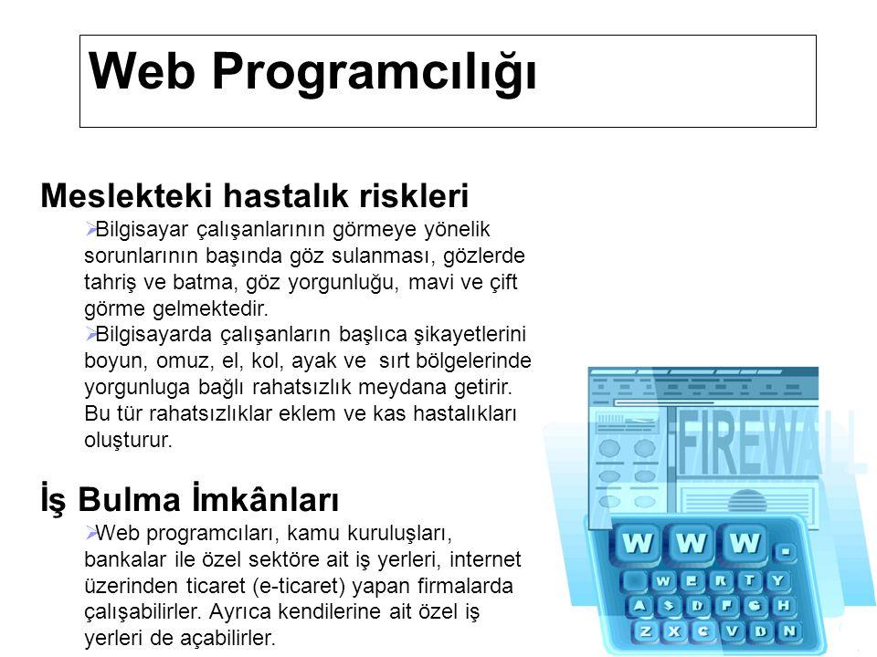 Web Programcılığı Eğitim ve Kariyer İmkânları  Meslek eğitimi 2006-2007 eğitim öğretim yılından itibaren meslek liselerinin Bilgisayar Kullanımı alanı Web Programcılığı sertifika programında verilecektir.