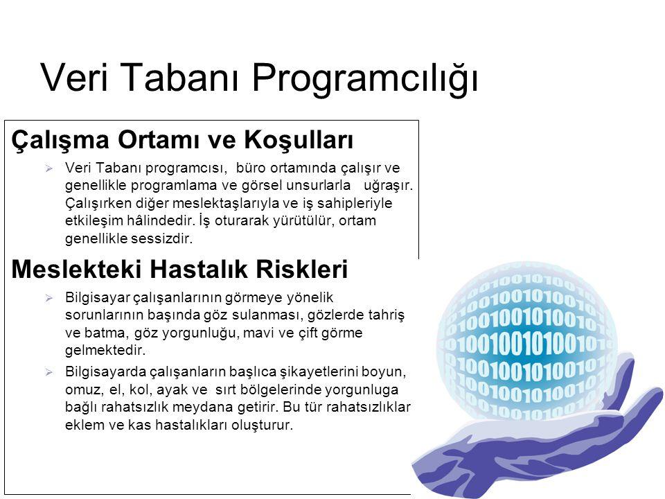Eğitim Ve Kariyer İmkânları  Meslek eğitimi 2006-2007 eğitim öğretim yılından itibaren meslek liselerinin Bilgisayar Kullanımı alanı Veri Tabanı Programcılığı sertifika programında verilecektir.