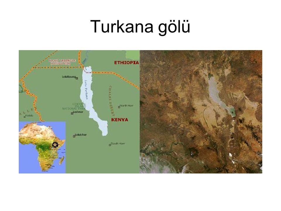 Turkana gölü