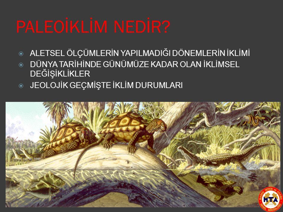 PALEOİKLİM NEDİR.