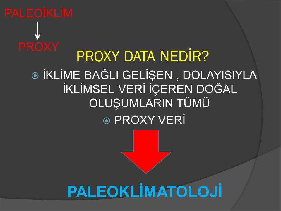 PALEOİKLİM PROXY PROXY DATA NEDİR.