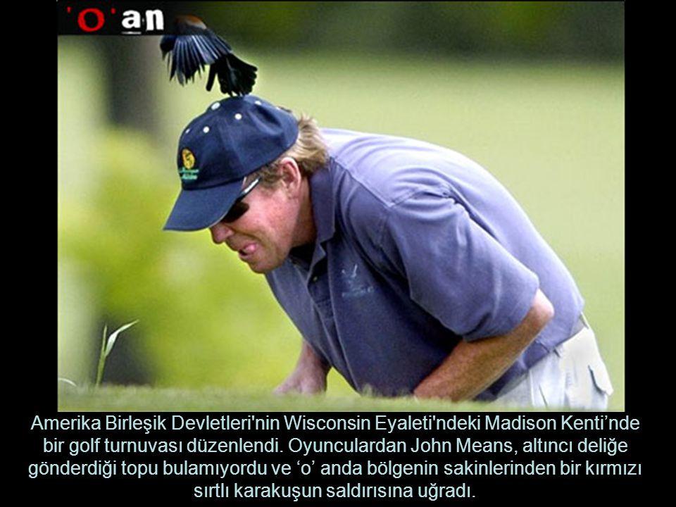 Amerika Birleşik Devletleri'nin Wisconsin Eyaleti'ndeki Madison Kenti'nde bir golf turnuvası düzenlendi. Oyunculardan John Means, altıncı deliğe gönde
