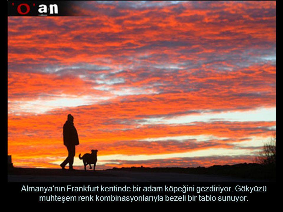 Almanya'nın Frankfurt kentinde bir adam köpeğini gezdiriyor. Gökyüzü muhteşem renk kombinasyonlarıyla bezeli bir tablo sunuyor.