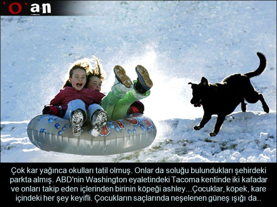 Çok kar yağınca okulları tatil olmuş.Onlar da soluğu bulundukları şehirdeki parkta almış.