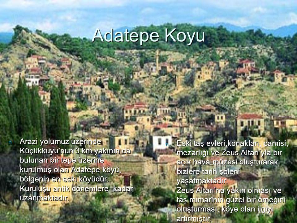 Adatepe Koyu n Arazi yolumuz üzerinde Küçükkuyu'nun 3 km yakının da bulunan bir tepe üzerine kurulmuş olan Adatepe köyü, bölgenin en eski köyüdür. Kur
