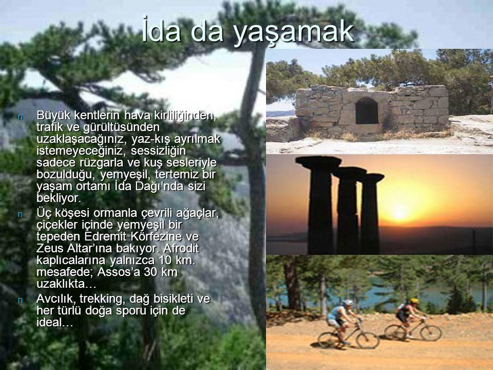 Efsanelerin Gerçekleştiği Yer İda n Ünlü Troya Atı, İda Dağı'na özgü köknar ağaçlarıyla inşa edilmişti.