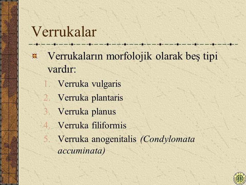 Verrukalar Verrukaların morfolojik olarak beş tipi vardır: 1.Verruka vulgaris 2.Verruka plantaris 3.Verruka planus 4.Verruka filiformis 5.Verruka anog
