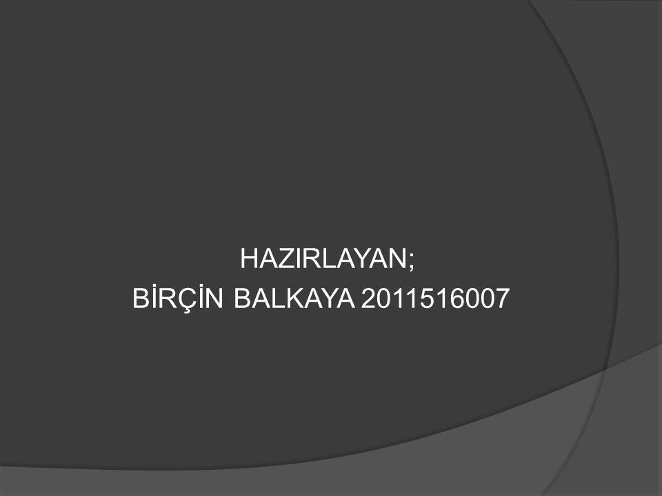 HAZIRLAYAN; BİRÇİN BALKAYA 2011516007