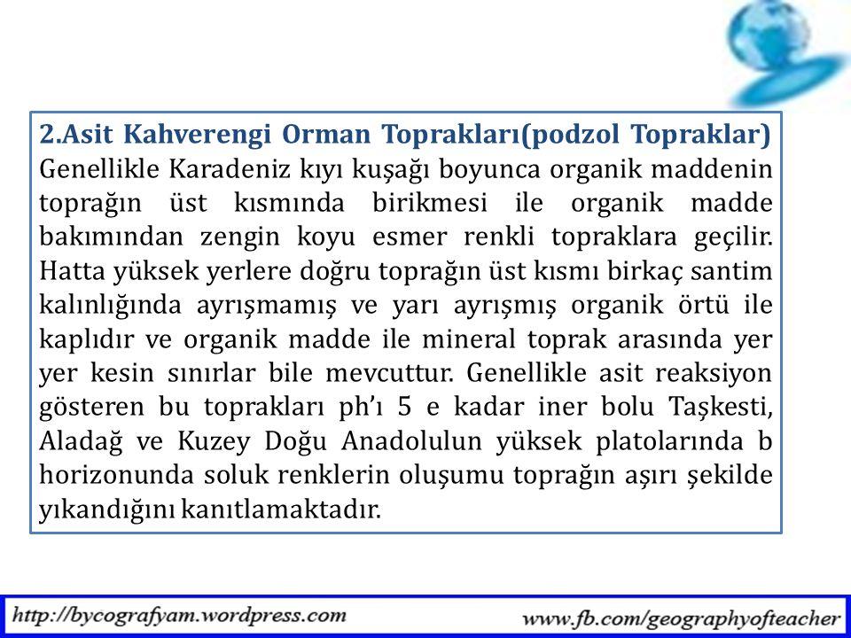 2.Asit Kahverengi Orman Toprakları(podzol Topraklar) Genellikle Karadeniz kıyı kuşağı boyunca organik maddenin toprağın üst kısmında birikmesi ile org