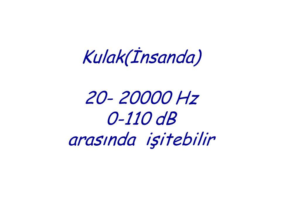 Kulak(İnsanda) 20- 20000 Hz 0-110 dB arasında işitebilir