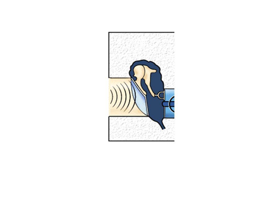 Ülkemizde yasal olarak bir günde kalınabilecek gürültü seviyeleri Gürültüye maruz kalınan süre (saat/gün) Maksimum gürültü seviyesi (dbA) 7.580 490 295 1100 0.5105 0.25110 1/8115