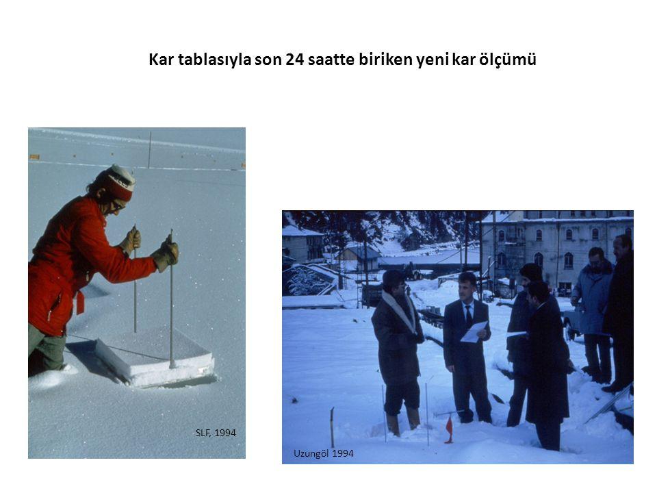 Kar tablasıyla son 24 saatte biriken yeni kar ölçümü SLF, 1994 Uzungöl 1994