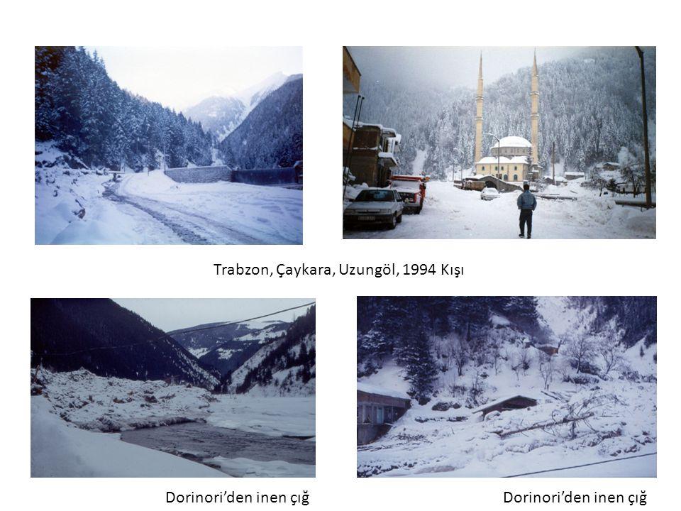 Trabzon, Çaykara, Uzungöl, 1994 Kışı Dorinori'den inen çığ