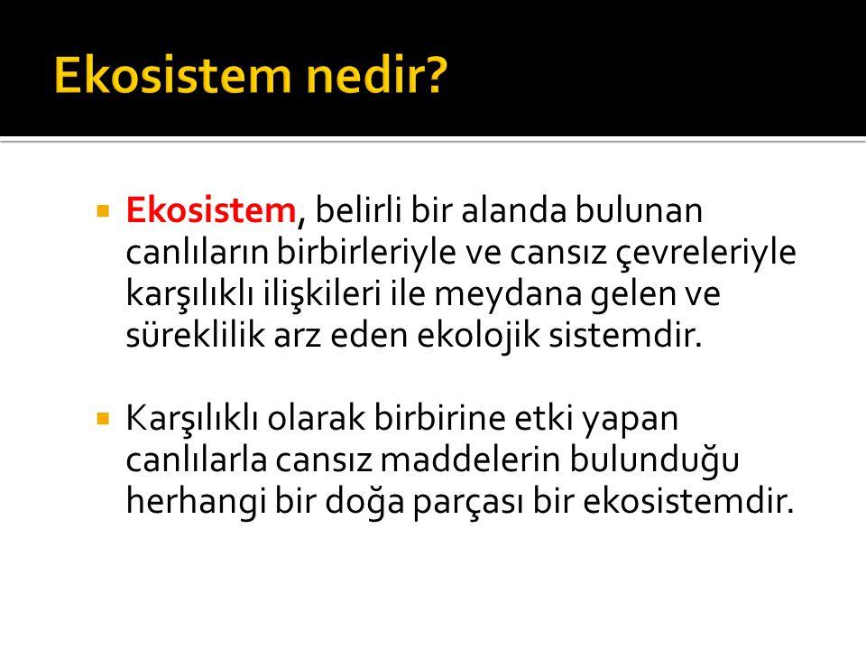 O Bir ekosistemin 4 temel bileşeni vardır: 1.Cansız çevre 2.