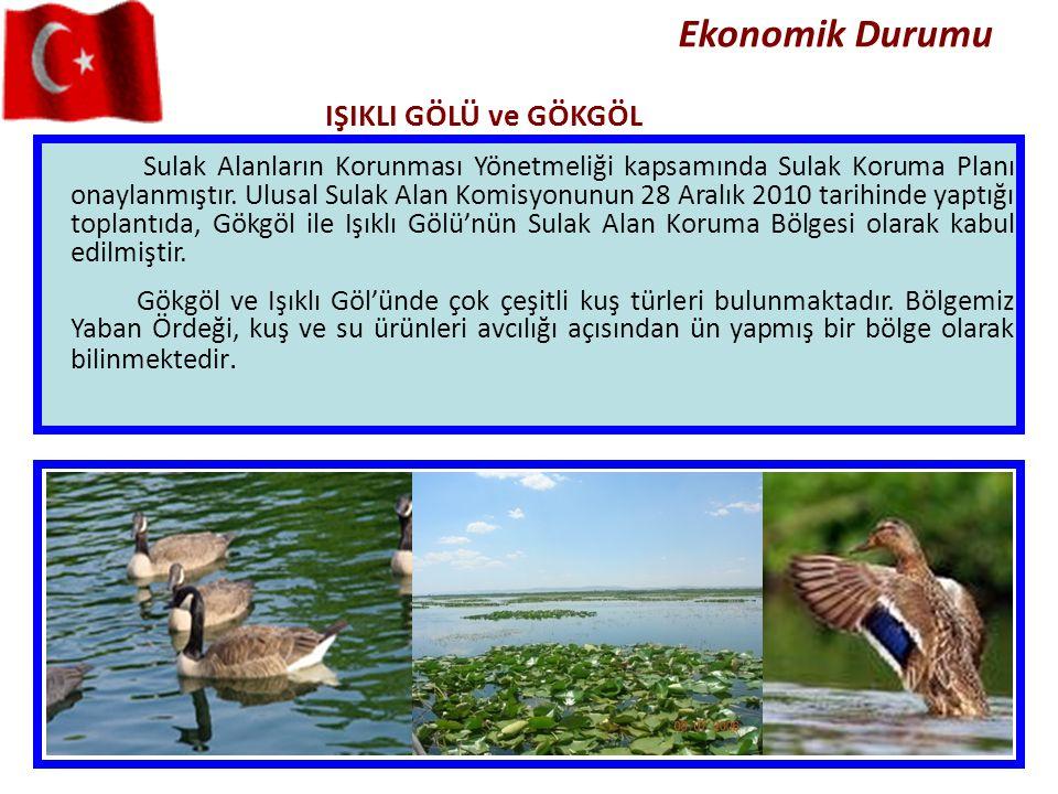 Ekonomik Durumu Sulak Alanların Korunması Yönetmeliği kapsamında Sulak Koruma Planı onaylanmıştır. Ulusal Sulak Alan Komisyonunun 28 Aralık 2010 tarih
