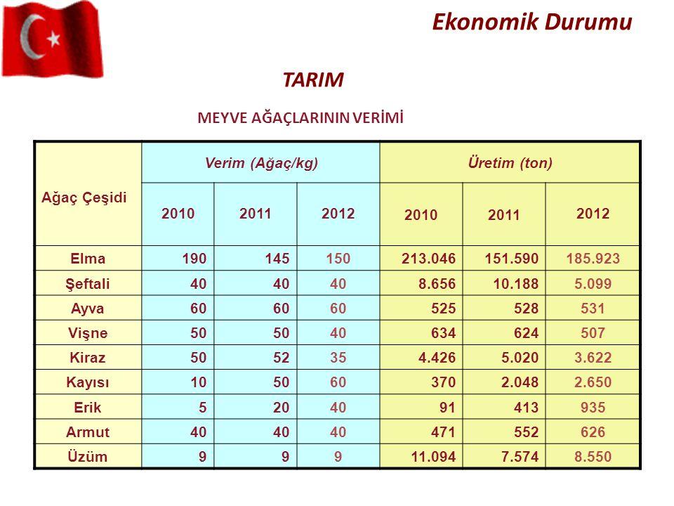 MEYVE AĞAÇLARININ VERİMİ TARIM Ekonomik Durumu Ağaç Çeşidi Verim (Ağaç/kg)Üretim (ton) 201020112012 20102011 2012 Elma190145150213.046151.590185.923 Ş