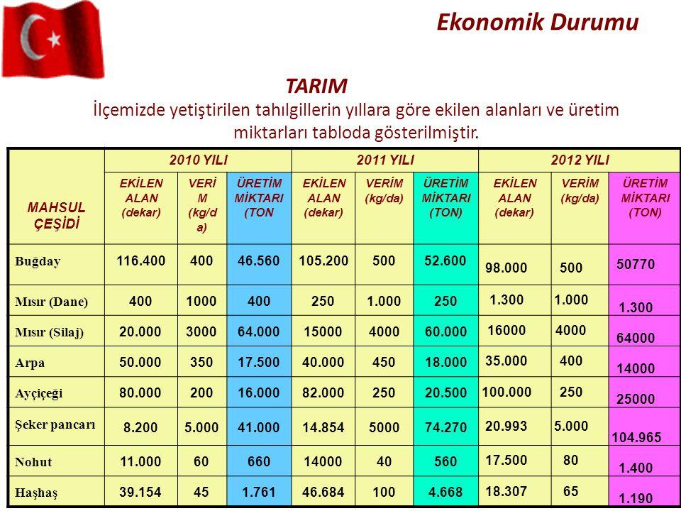 Ekonomik Durumu İlçemizde yetiştirilen tahılgillerin yıllara göre ekilen alanları ve üretim miktarları tabloda gösterilmiştir. TARIM MAHSUL ÇEŞİDİ 201