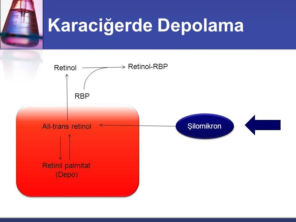 Şilomikron Retinil esterler  -Karoten Safra asidleri reesterifikasyon Diyet  -Karoten Retinol Retinal RetinolRetinil esterleri Yağ asidi açil CoA Ya
