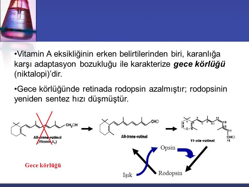 Karotenler  Antioksidan özelliğe sahiptir.  lipoprotein ve membrana lokalize,  süperoksit anyonun nötralizasyonunda rol oynarlar,  lipid peroksida