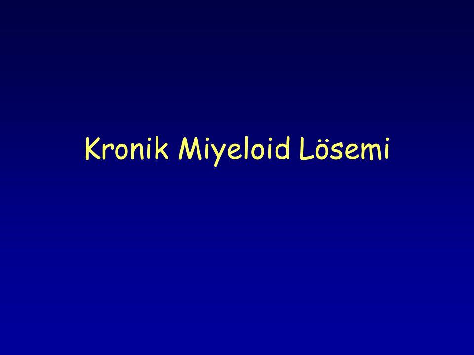 Kronik Miyeloid Lösemi