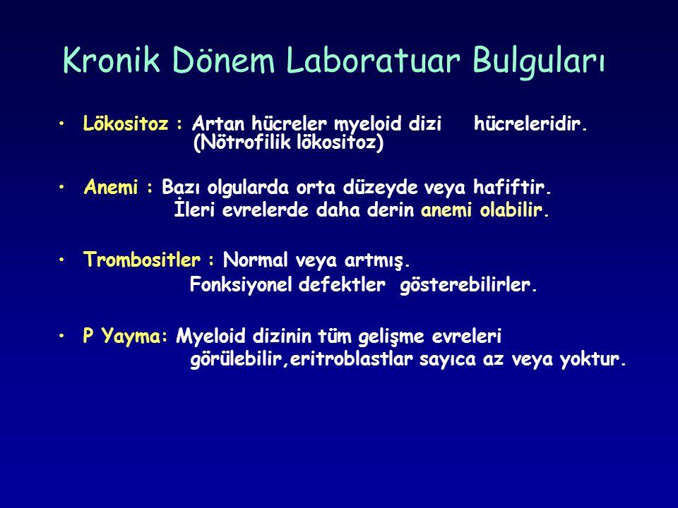 Kronik Dönem Laboratuar Bulguları •Lökositoz : Artan hücreler myeloid dizi hücreleridir. (Nötrofilik lökositoz) •Anemi : Bazı olgularda orta düzeyde v
