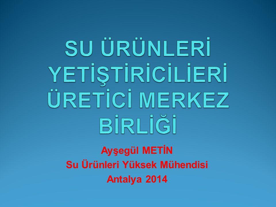 Ayşegül METİN Su Ürünleri Yüksek Mühendisi Antalya 2014